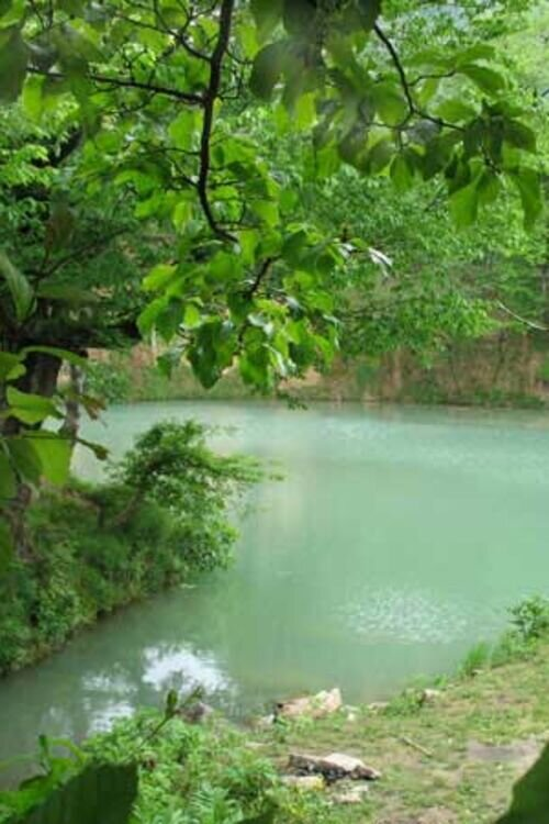 تور شاد گلستان  گردی | دریاچه گل رامیان