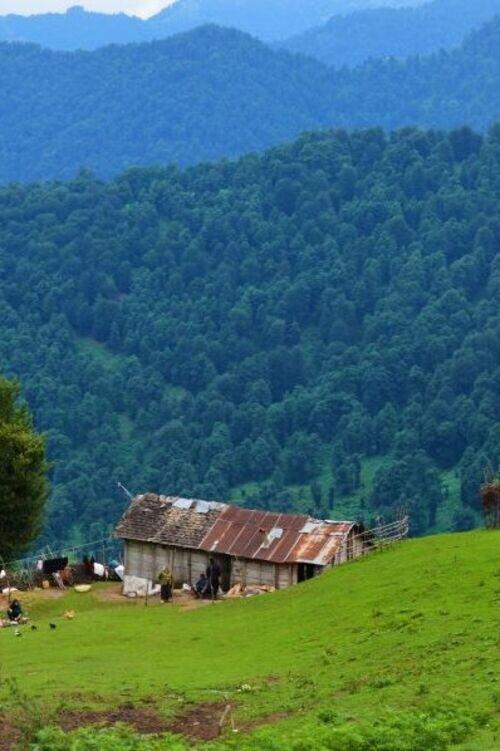 سفر به بهشت گمشده گیلان | کلبه های چوبی