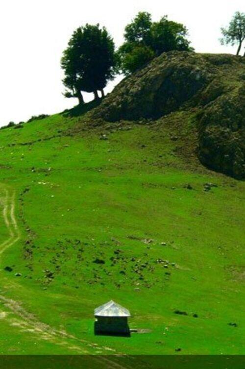 سفری رویایی به بهشت گم شده ایران
