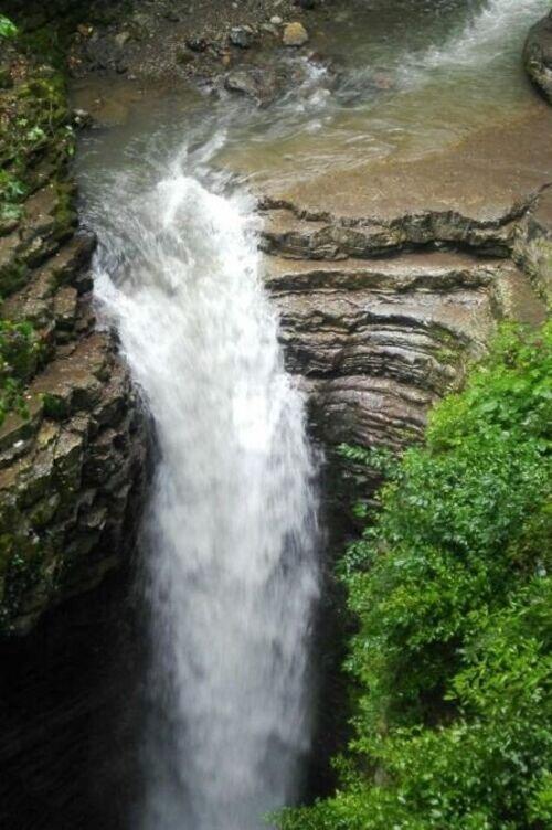جنگل و ساحل گیسوم آبشار ویسادار