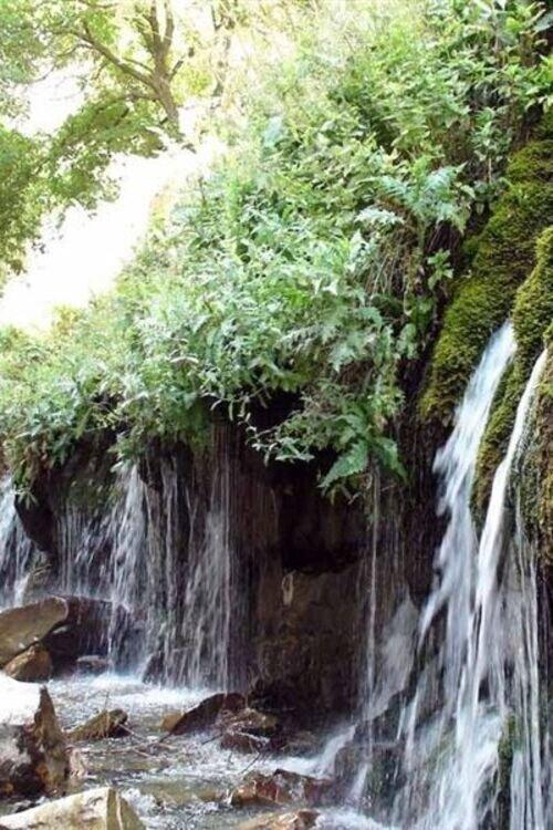 تور شاد آبشار هفت چشمه (پنجشنبه و جمعه)