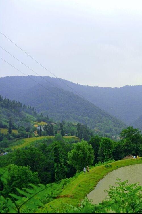 تورشاد در روستای اسطلخ جان